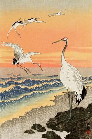 https://imgc.artprintimages.com/img/print/cranes-on-seashore_u-l-pnacbl0.jpg?p=0