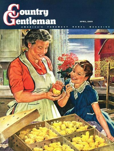 """Crate of New Baby Chicks,"" Country Gentleman Cover, April 1, 1945-W^C^ Griffith-Giclee Print"