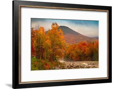 Crazy Autumn Color, White Mountains New Hampshire New England-Vincent James-Framed Photographic Print