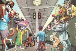 Crazy Cats Boarding the Train