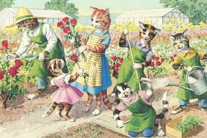 Crazy Cats in the Garden