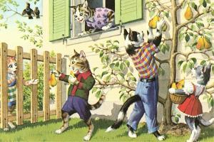 Crazy Cats Picking Pears