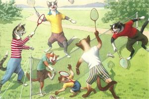 Crazy Cats Playing Badminton