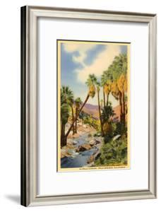 Creek Through Palm Canyon, Palm Springs, California