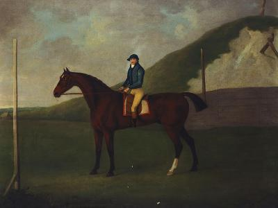 Creeper' a Bay Colt with Jockey Up at the Starting Post at the Running Gap in the Devils Ditch,…-John Nost Sartorius-Giclee Print