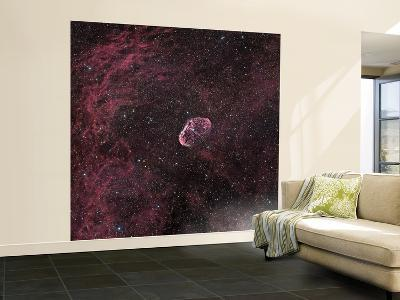 Crescent Nebula--Wall Mural – Large