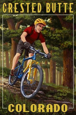 https://imgc.artprintimages.com/img/print/crested-butte-colorado-mountain-biker-in-trees_u-l-q1gqfga0.jpg?p=0