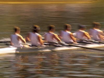 https://imgc.artprintimages.com/img/print/crew-rowing-seattle-washington-usa_u-l-p4m2f70.jpg?p=0