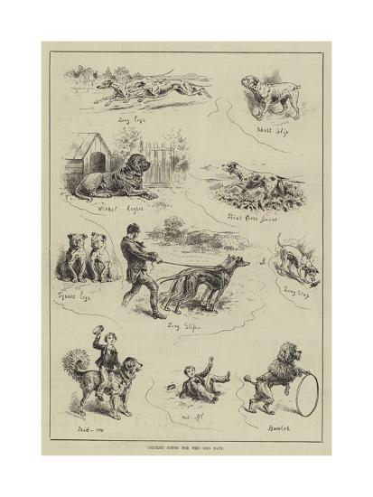 Cricket Notes for the Dog Days--Giclee Print