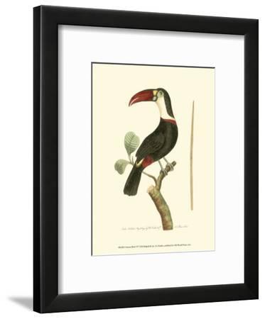 Crimson Birds VI-Frederick P. Nodder-Framed Art Print