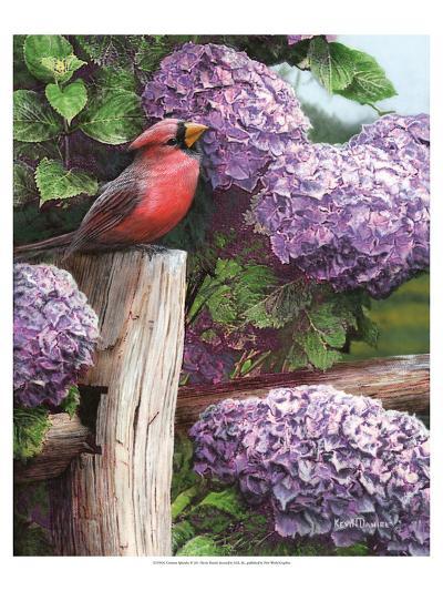 Crimson Splendor-Kevin Daniel-Art Print