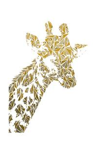 Giraffe by Cristian Mielu