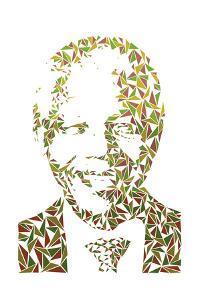 Nelson Mandela by Cristian Mielu
