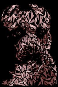 Pitbull by Cristian Mielu