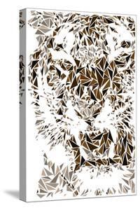 Tiger by Cristian Mielu