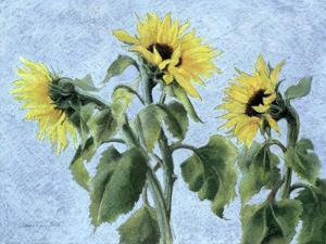 Sunflowers, 1996 by Cristiana Angelini