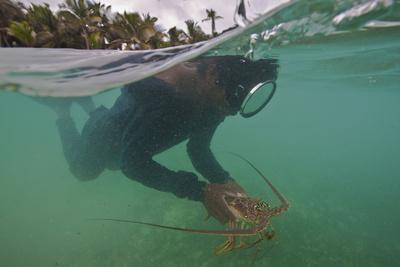 Miskito Indian Dives for Lobsters in the Coral Reefs Off the Gracias a Dios Municipality, Honduras