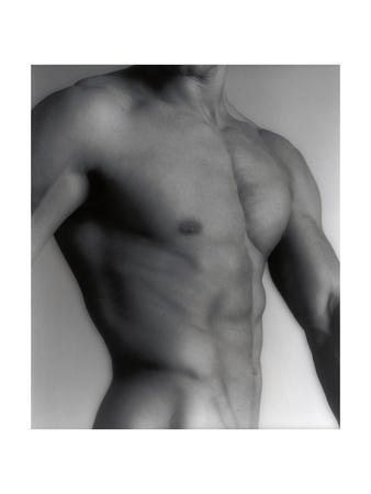 Nude Man's Torso