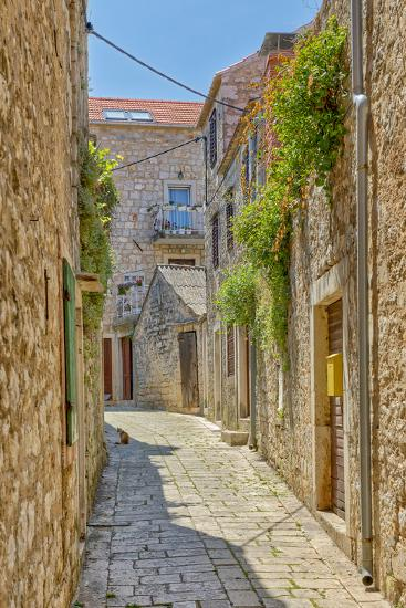 Croatia, Stari Grad. Cat in town street.-Jaynes Gallery-Photographic Print