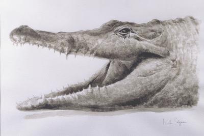 Crocodile, 2005-Lincoln Seligman-Giclee Print