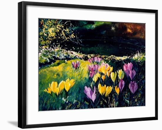 Crocusses-Pol Ledent-Framed Art Print