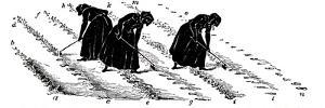 Crop Rotation: Women Thinning Turnips, 1855