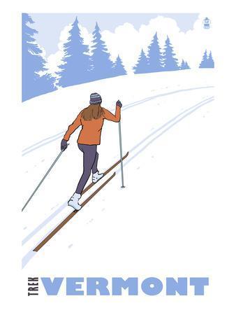 https://imgc.artprintimages.com/img/print/cross-country-skier-vermont_u-l-q1gpk610.jpg?p=0