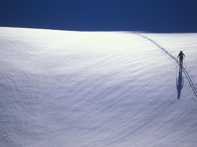 Cross-Country Skiing on a Glacier in Alaska-John Burcham-Photographic Print
