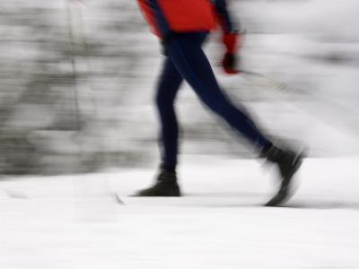 Cross Country Skiing on Spray River Trail, Banff, Alberta-Michele Westmorland-Photographic Print