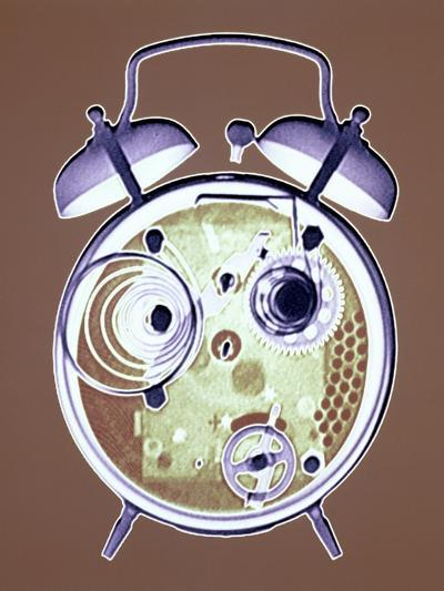 Cross-section of Alarm Clock--Photographic Print