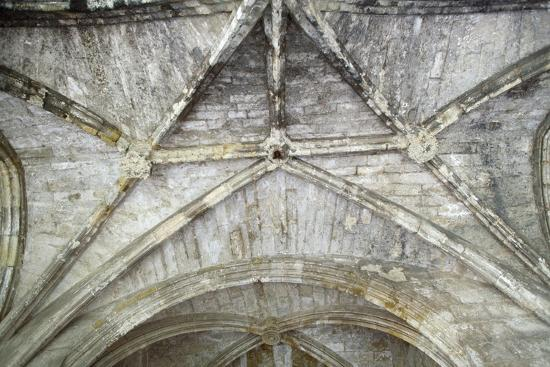 Cross Vaults, Detail from Cloisters of Narbonne Cathedral, Narbonne, Languedoc-Roussillon--Giclee Print