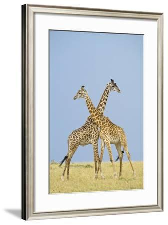 Crossed-Susann Parker-Framed Photographic Print