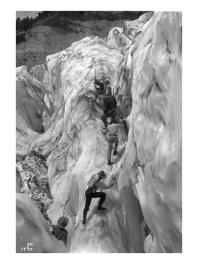Crossing Crevasse on the Nisqually Glacier, ca. 1905-Ashael Curtis-Giclee Print