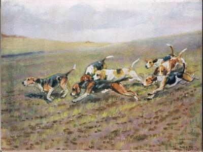 Crossing the Fields, Illustration from 'Hounds'-Thomas Ivester Lloyd-Giclee Print