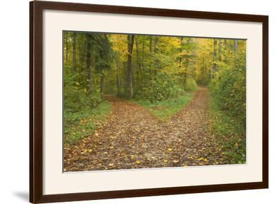 Crossroads Showing Fork in Path Where a Country--Framed Photographic Print