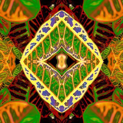 Croton Dashiki-Rose Anne Colavito-Art Print