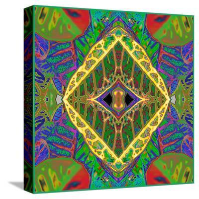 Croton Shield 2-Rose Anne Colavito-Stretched Canvas Print
