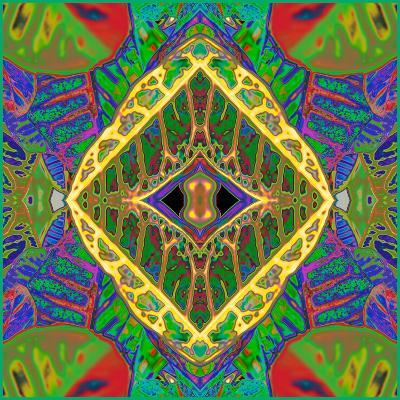 Croton Shield 2a-Rose Anne Colavito-Art Print