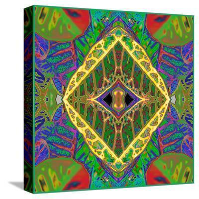 Croton Shield 2a-Rose Anne Colavito-Stretched Canvas Print