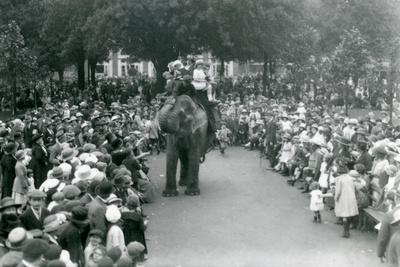 https://imgc.artprintimages.com/img/print/crowds-of-visitors-watch-an-elephant-ride-at-london-zoo-august-bank-holiday-1922_u-l-pukjv30.jpg?p=0