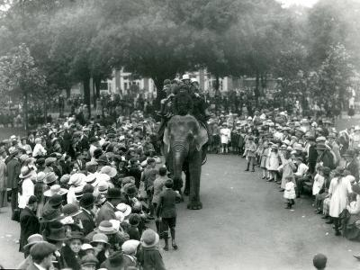 Crowds of Visitors Watch an Elephant Ride at London Zoo, August Bank Holiday, 1922-Frederick William Bond-Photographic Print