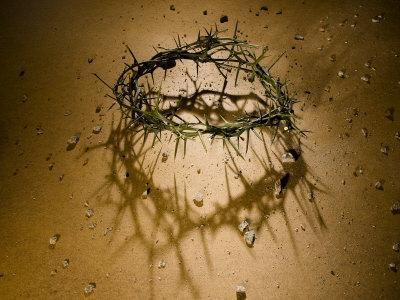 https://imgc.artprintimages.com/img/print/crown-of-thorns-with-large-shadow-and-pieces-of-rock_u-l-p9bqyc0.jpg?p=0