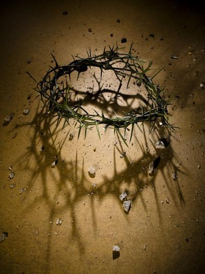 Crown of Thorns with Large Shadow and Pieces of Rock-Joshua Hultquist-Photographic Print