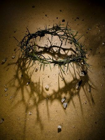 https://imgc.artprintimages.com/img/print/crown-of-thorns-with-large-shadow-and-pieces-of-rock_u-l-pxyyfn0.jpg?p=0
