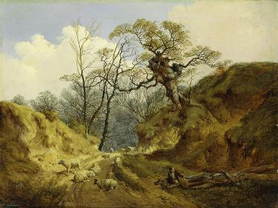 Crown Point, Whitlingham, Near Norwich, 1855-John Berney Ladbrooke-Giclee Print