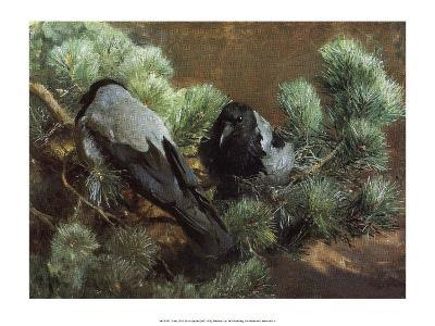 Crows, 1891-Bruno Liljefors-Art Print