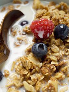 Crunchy Muesli with Berries and Milk