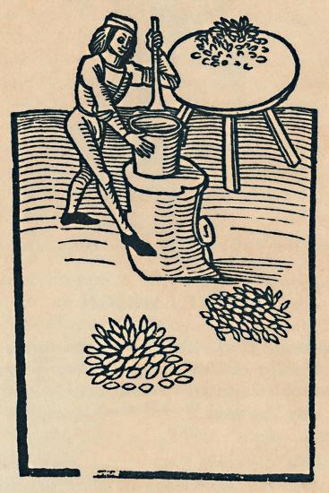 'Crushing Herbs in a Mortar', 1947-Unknown-Giclee Print