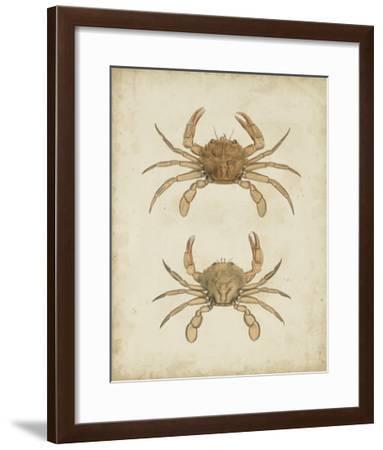 Crustaceans VI-James Sowerby-Framed Giclee Print