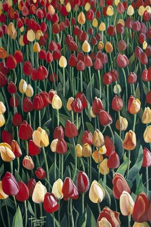 Tulips, 2010